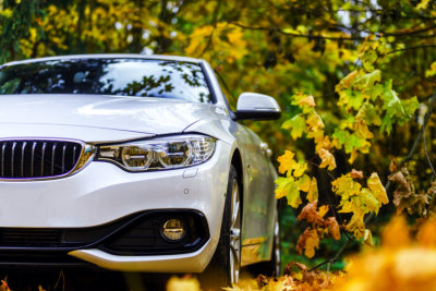 white car and autumn colors